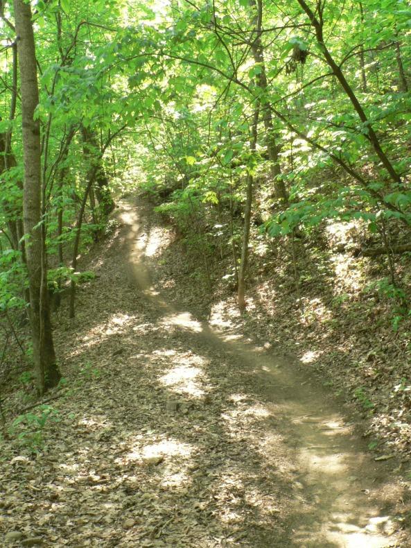 Ingles Field Gap Trail